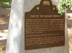 Oak of the Golden Dream Sign