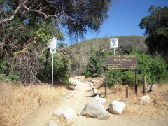 Placerita Canyon Trails